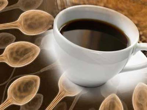 Cà phê giúp tăng khả năng sinh sản của nam giới